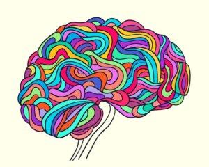 Neurobiologia della resilienza