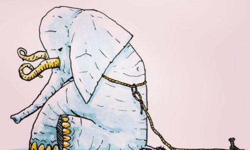 Dall'impotenza appresa alla depressione: il ruolo del pessimismo