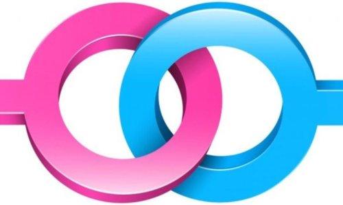 Non è che sono gay? Le ossessioni omosessuali nel disturbo ossessivo-compulsivo: descrizione, cenni diagnostici e di trattamento