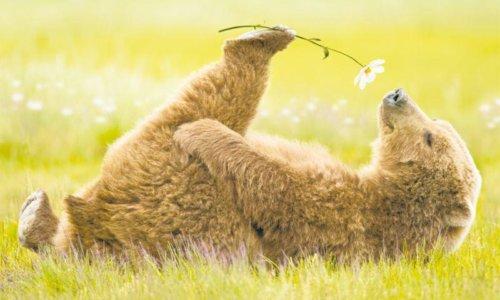Ridurre lo stress e l'ansia: un valido esercizio di rilassamento psicofisico
